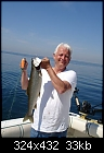 Bob's Lake Trout(Lake Michigan).jpg